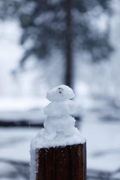 Sierra Snowman